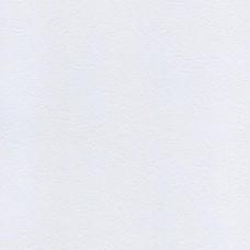 Белый-платина